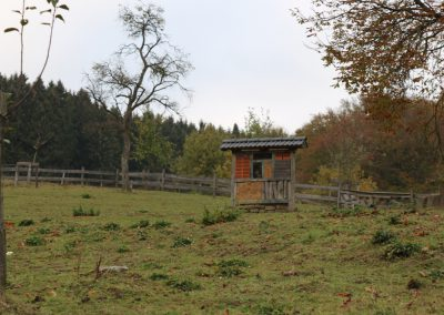 Herbstwanderung_2018_110