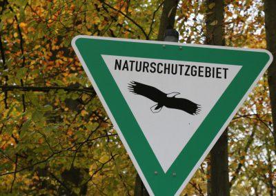 Herbstwanderung_2018_152